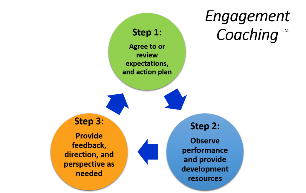 performance coaching model and methodology an Hrinz hr competency model  to improve their professional performance and personal satisfaction,  coaching and mentoring may use.