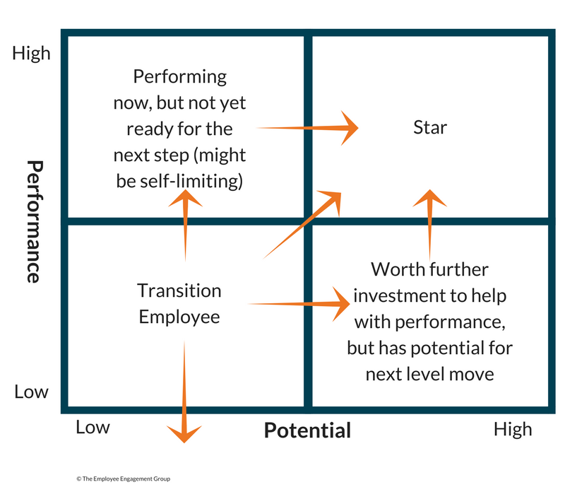 A matrix to plot an employee's potential for growth